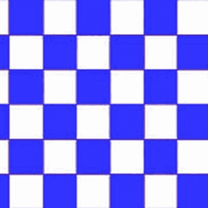 Blue and White Checkered Giant Flag