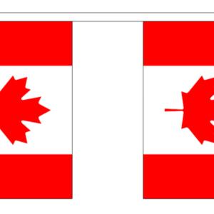 Canada Bunting 9 metres