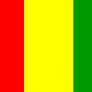 Carlow Flags