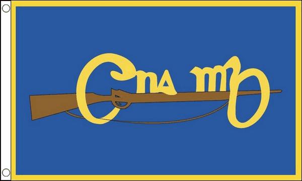 Cumann na mBan Flags