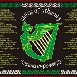 Fields of Athenry Flags