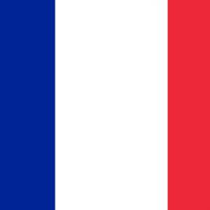 France Nylon Flag