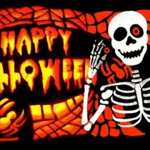 Halloween Bones Flag