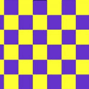 Purple and Yellow Checkered Flag
