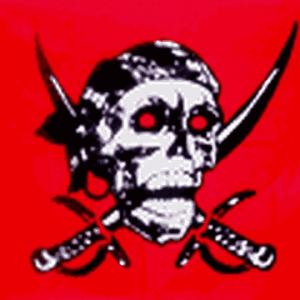 Red Skull Flag