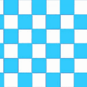 Sky Blue and White Checkered Flag