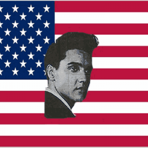 USA Elvis Flag