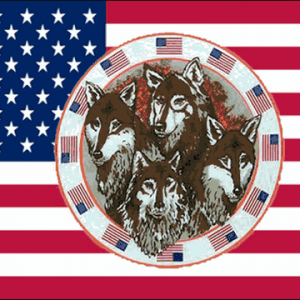 USA Four Wolves Flag