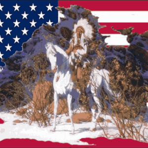 USA indian chief flag