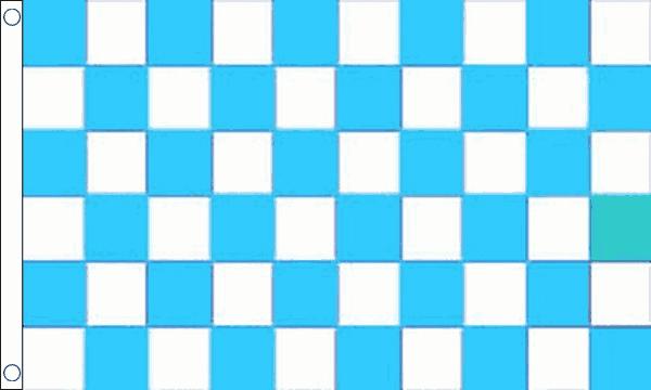 Sky Blue & White Checkered Flag