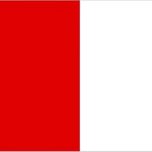 Louth Flag