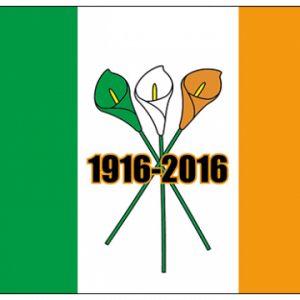 Easter Rising Centenary Flag