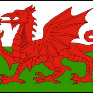 Wales Giant Flag