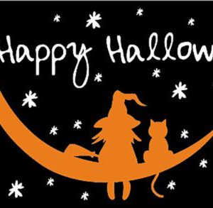 Halloween Witch and Cat Flag