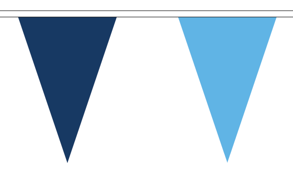 Navy and Sky Blue Bunting