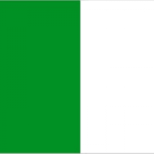 green and white flag