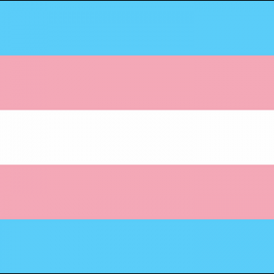 Transgender Flag 3ft x 2ft