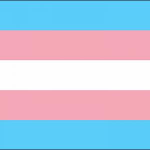 Transgender Flag 3ft x 2ft