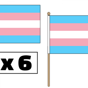 Transgender Hand Waving Flags