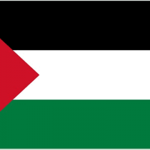 Palestine Giant Flag