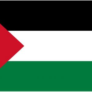 Palestine Giant Flag