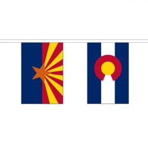 50 US State Bunting