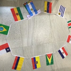 South American Nations Bunting