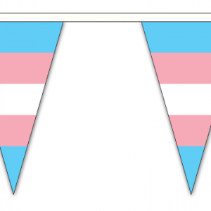 Transgender Triangle Bunting