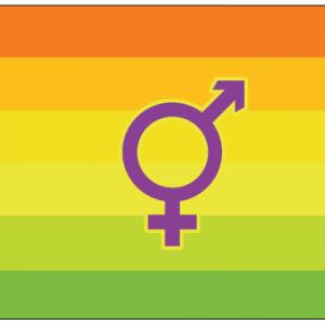 Hermaphrodite Flag