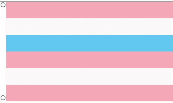 Intersex Pink & Blue Pride Flag