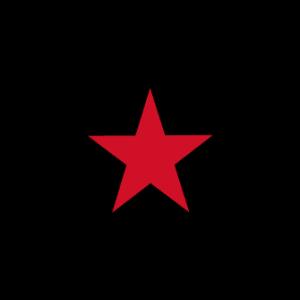 EZLN Flag